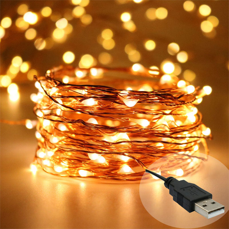 Copper LED USB string lights Christmas fairy lights wedding decorations-Fairy Lights-1stAvenue