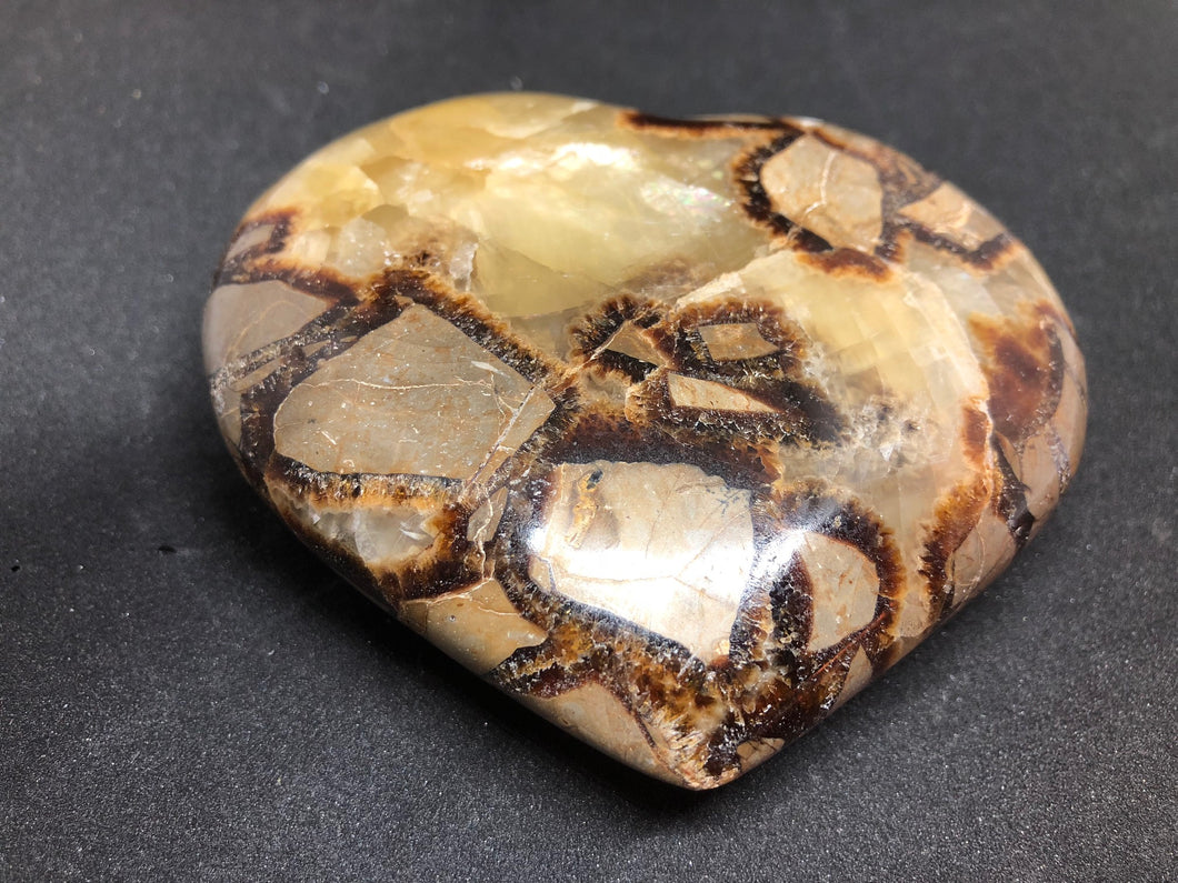 Dragon Septarian Stone Heart, Septarian, - Goddess Stone