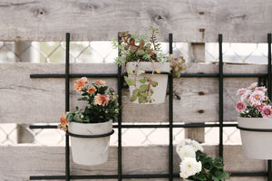 Grid Wall Planter - Elizabeth Hales Design