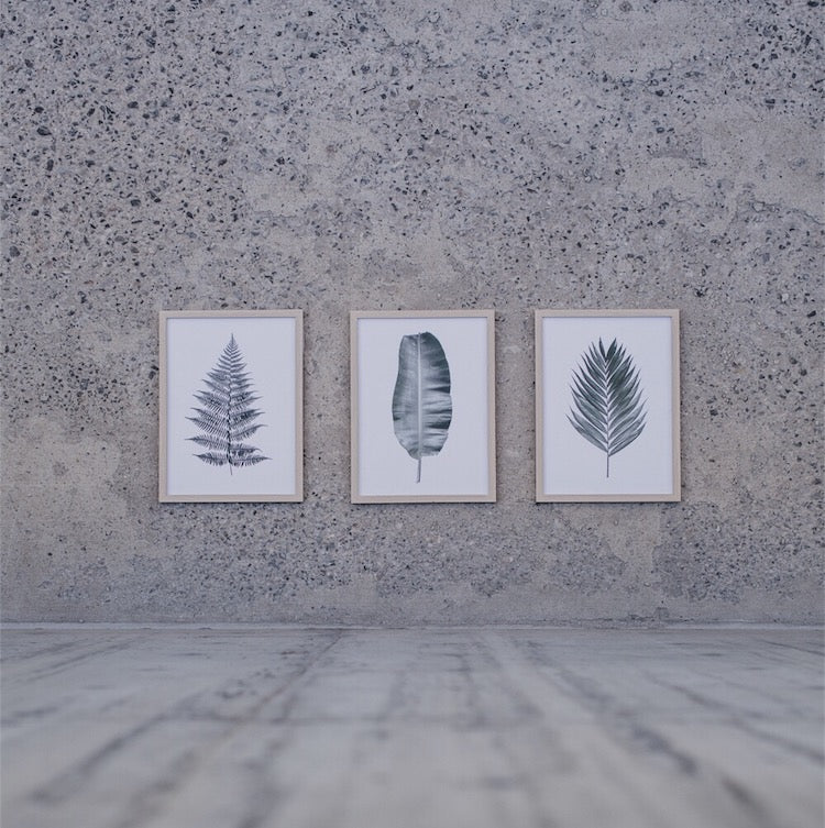 Botanical Leaf Prints