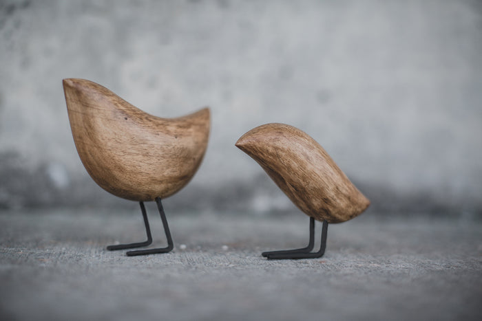 Wooden Bird Set
