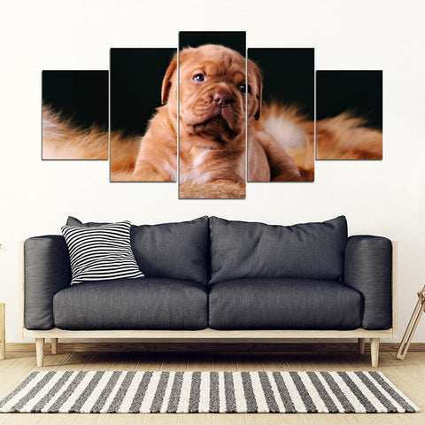 Dogue de Bordeaux Print- Piece Framed Canvas- Free Shipping-Paww-Printz-Merchandise