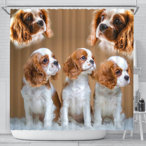 Cavalier King Charles Spaniel Print Shower Curtain-Free Shipping