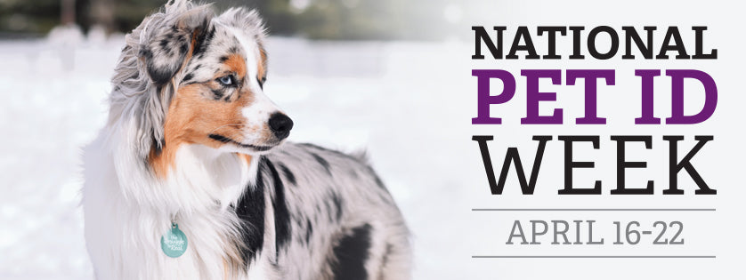 National Pet ID Week, April 16-22  |  Tag a Pet