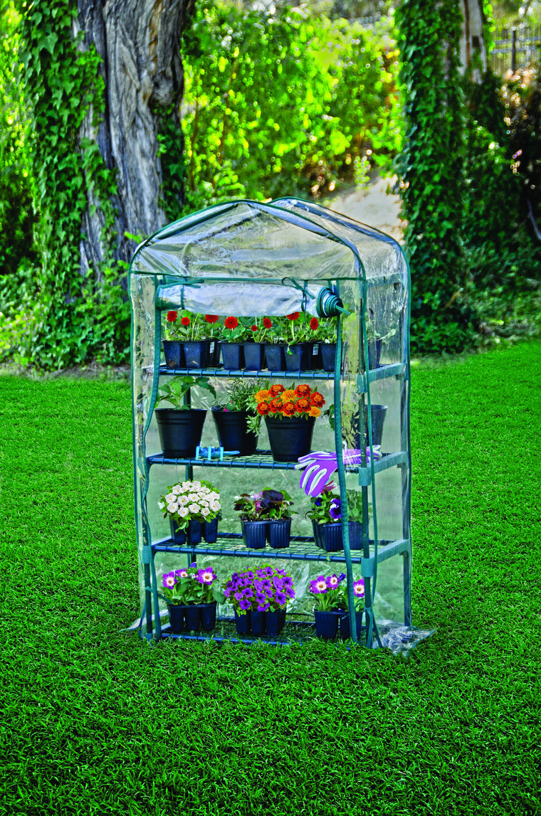 Bloom 4 Tier Steel Shelves Greenhouse , Bond- grayburd