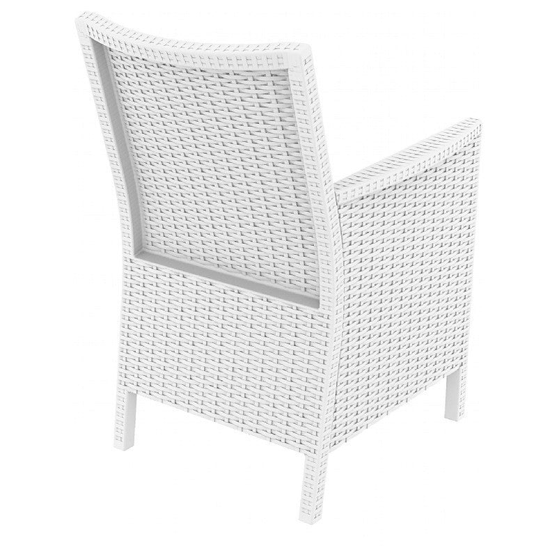 California Resin Wickerlook Chair - grayburd