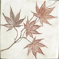 Maple Leaf Imprint Ceramic Tile