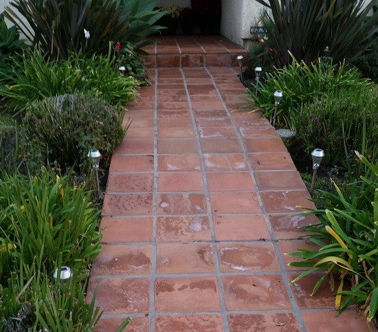 Powdery efflorescence appears as a white powder on this unsealed tile walk