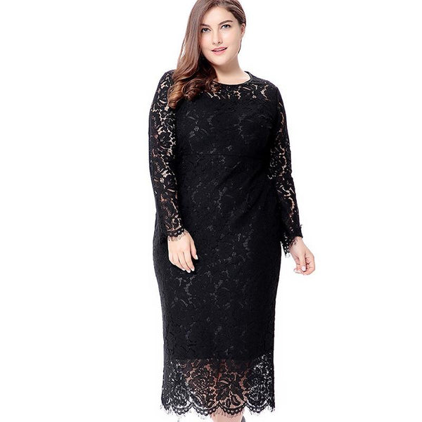 Lace Tight Long Sleeve Dress dress