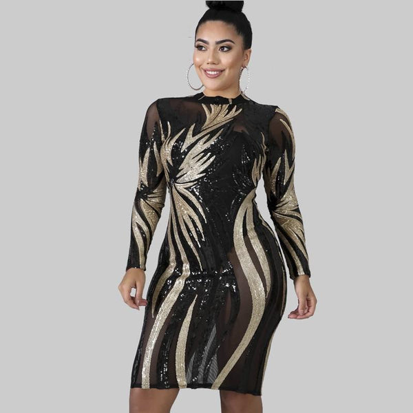 Long Sleeve See Through Night Dress dress