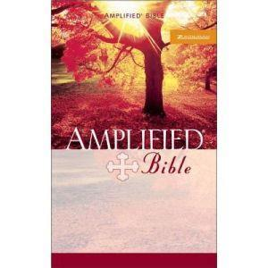 Amplified Mass Market Bible by Zondervan