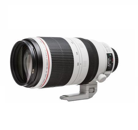 Canon Professional Cylindrical Lens 100-400mm