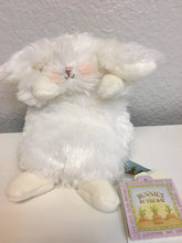Load image into Gallery viewer, Itty Bit Plush Bunny