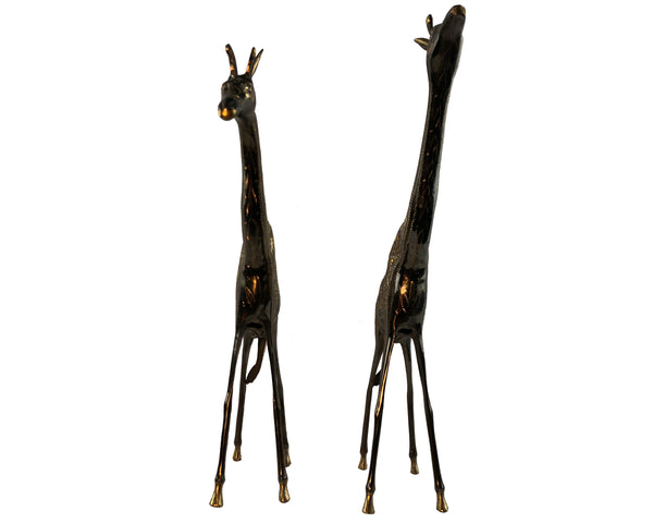 Natural Geo Set of 2 Brass Giraffe Decor Set