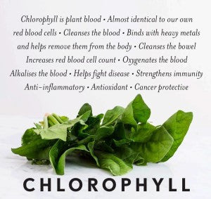 Chlorophyll, Nature's Natural Deodorant