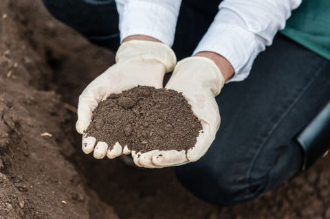 Dirt Don't Hurt: How Environmental DNA in Urban Soil Could Save Lives