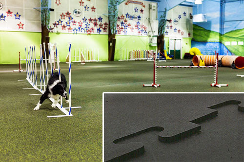 Dog Kennel Flooring Photo