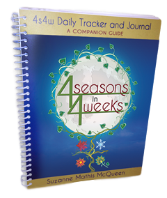 4s4w Daily Tracker and Journal: a Companion Guide