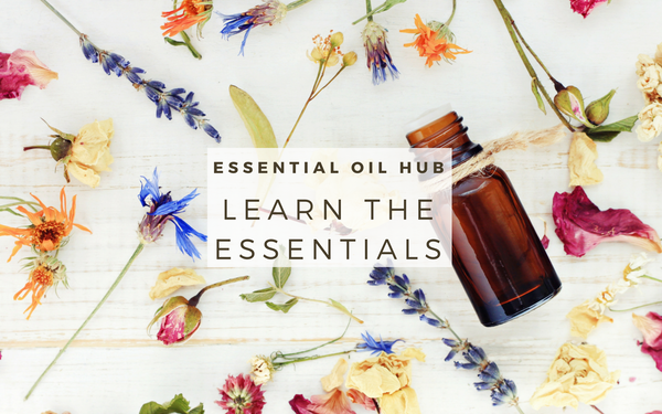 The Absolute Beginner's Guide to Using Essential Oils