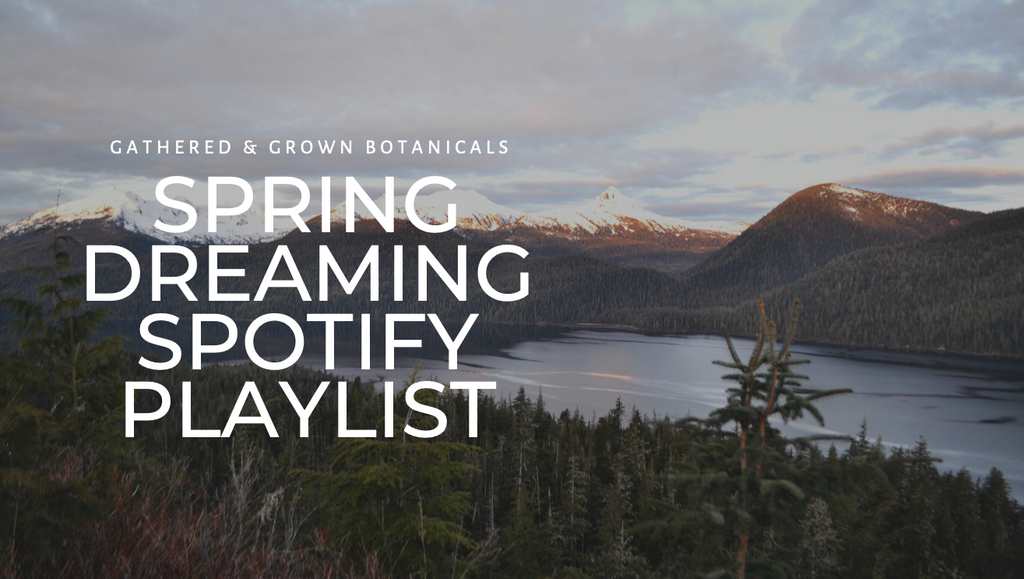 A Playlist for Spring Dreaming