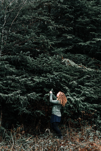 A woman forages Sitka Spruce boughs in Alaska