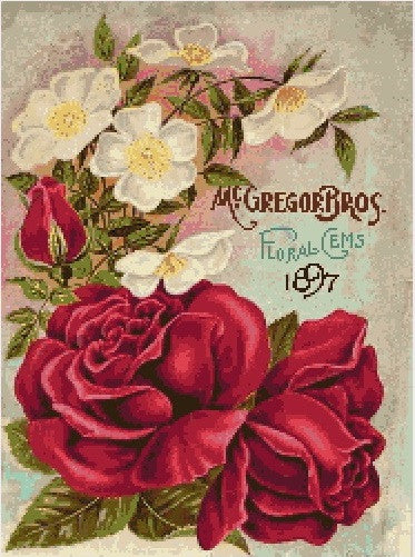 McGregor Roses 1897 Seeds PDF