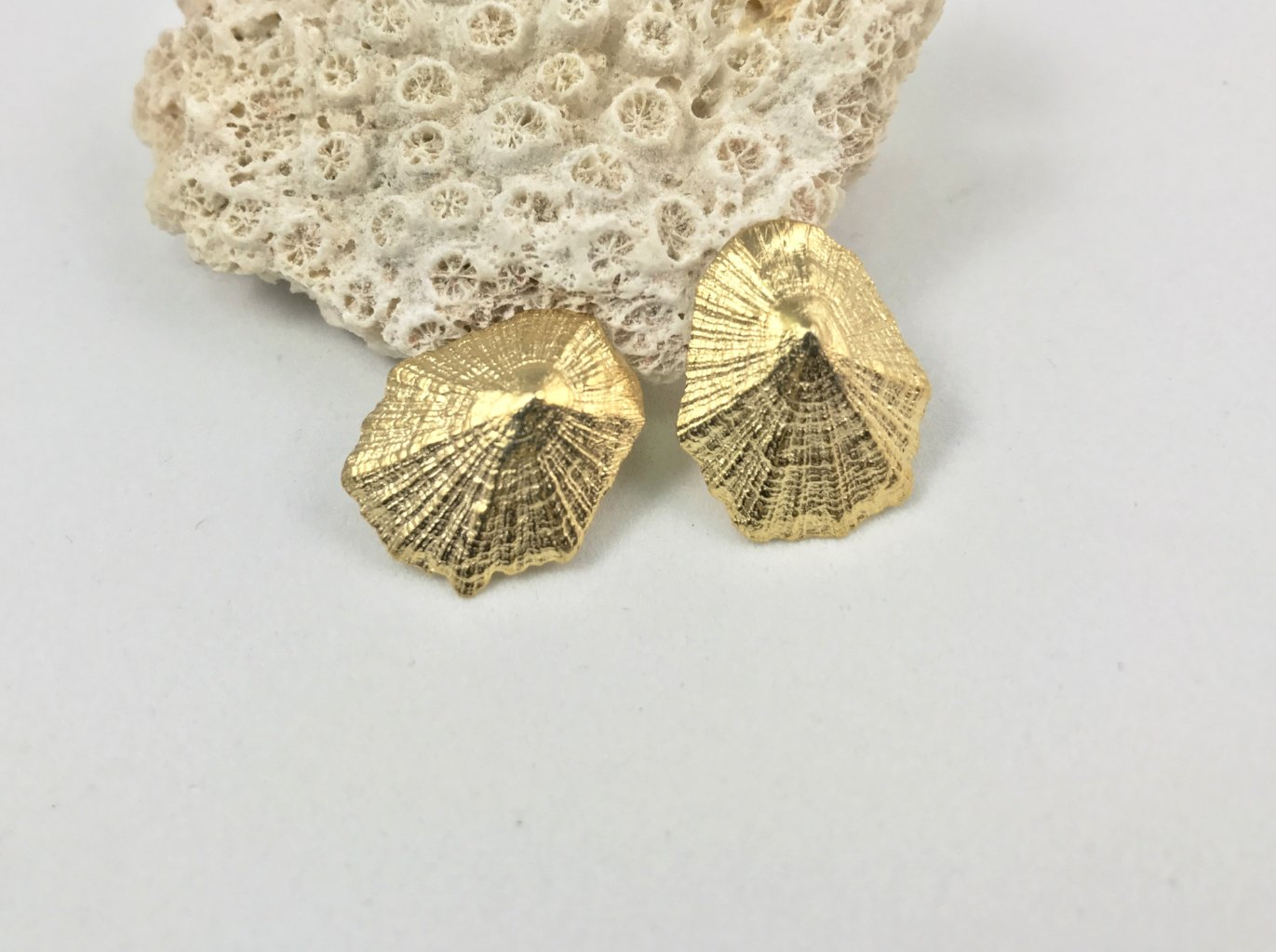 LIMPET SHELL stud earrings - gold plated - Jennifer Kinnear Jewellery - Shell collection