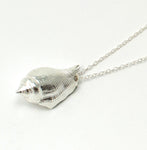 SEA SNAIL Necklace
