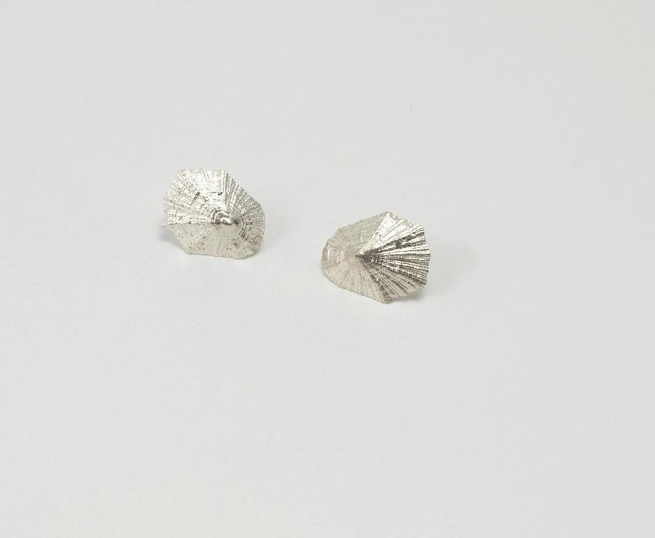 LIMPET SHELL Stud Earrings