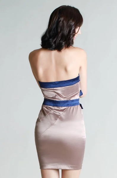 Tube Silk Dress