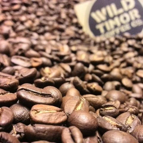 From Small Beginnings Pt 2: Wild Timor's First Roast