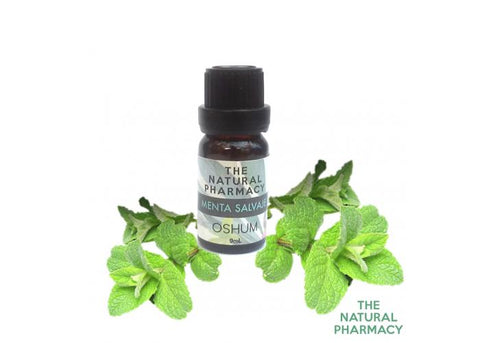 MINT WILD - Essential oil grade therapeutic 9ml.