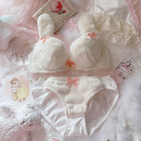Rabbit Plush Bra Lingeries Set AD12823