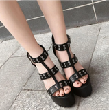 Round Hole Strap High-Heel Shoes AD11432