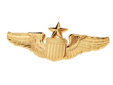Golden Wing For Pilots