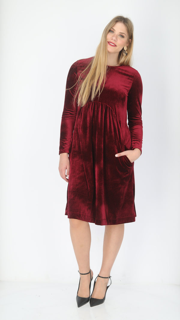 Waisted Velvet Dress / Points