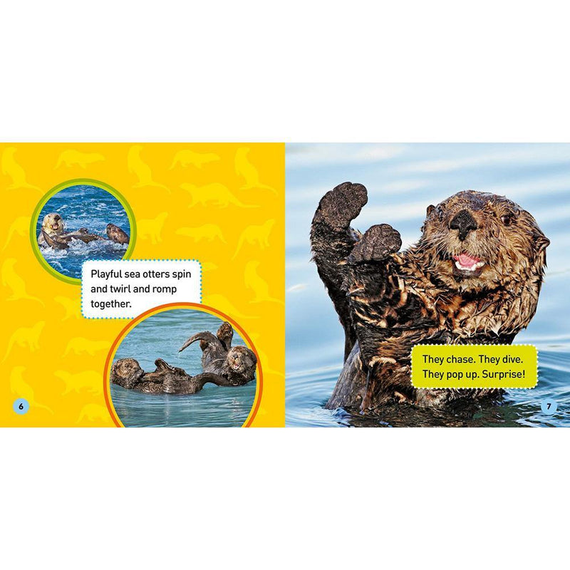 NGK Explore My World: Sea Otters-BuyBookBook