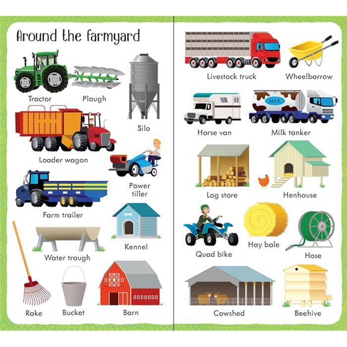Usborne 199 Things on the Farm-BuyBookBook