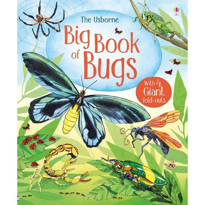 Big book of bugs-BuyBookBook
