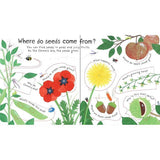 First Questions and Answers How do flowers grow?-BuyBookBook