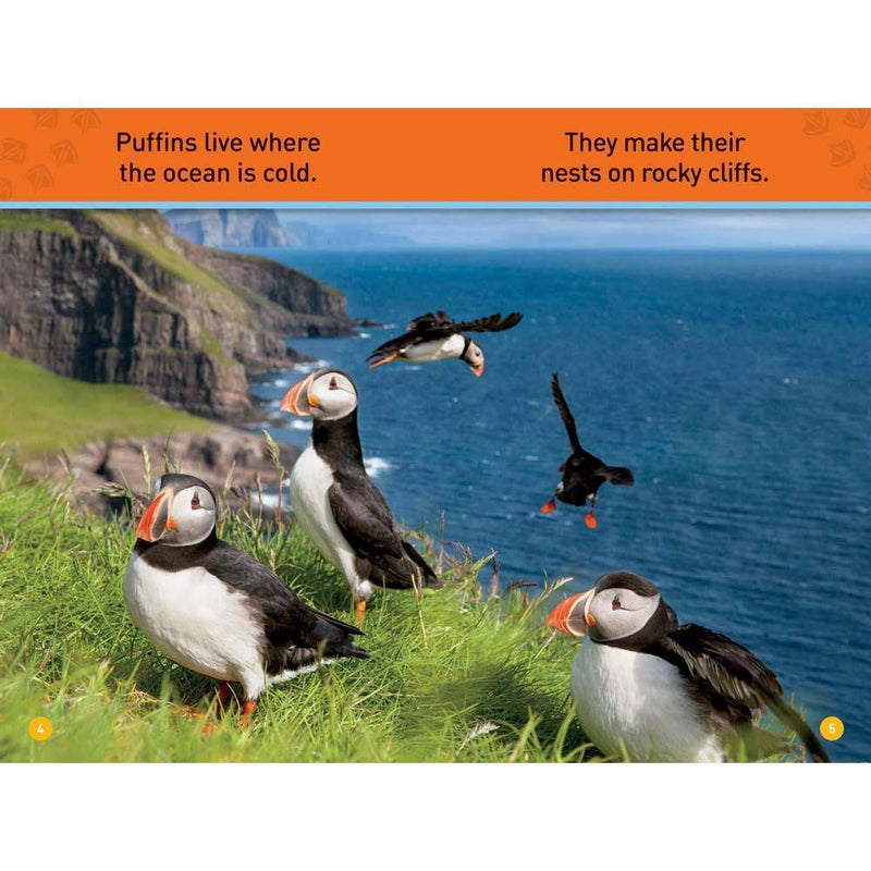 Puffins (L0) (National Geographic Kids Readers)-BuyBookBook