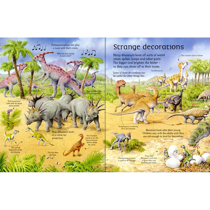 See inside the world of dinosaurs-BuyBookBook