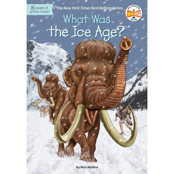 What Was the Ice Age? (Who | What | Where Series)-BuyBookBook