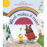 First Questions and Answers What Makes It Rain?-BuyBookBook