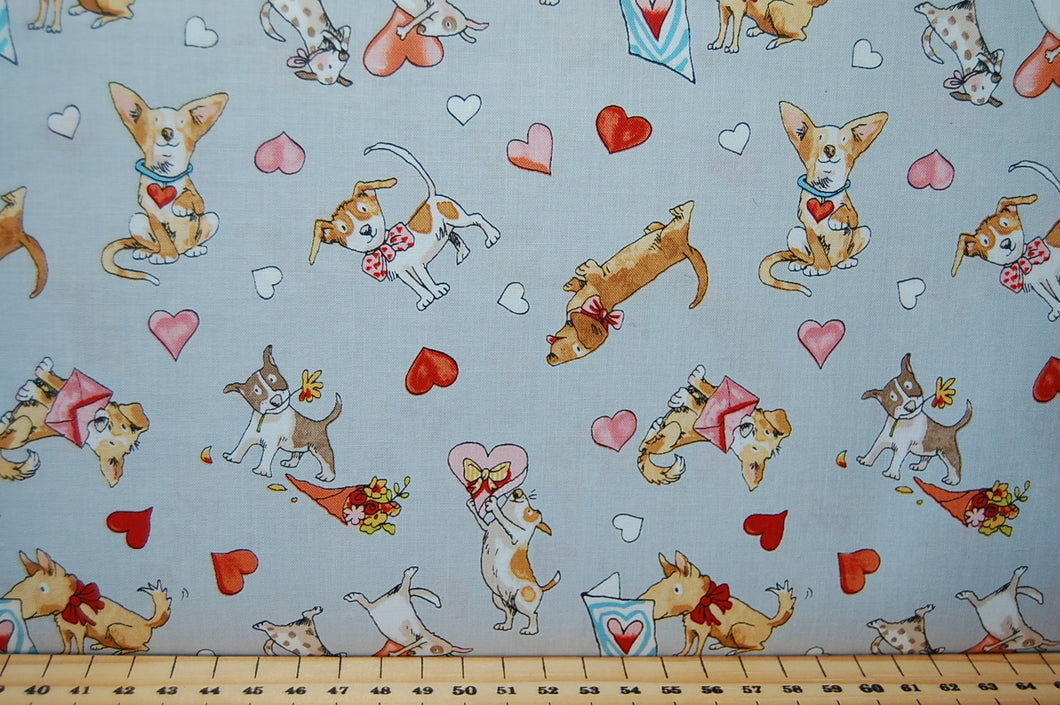 Anita Jeram Puppy Love Guess How Much I You Dog Dachshund Wiener Sausage Bull Terrier Mutt Heinz 57 Mixed Breed Letter Valentine Card Heart Red Bowl Treat Treats Snacks Food Bone White Lead Tree Bird Grey