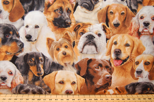 Fabric Shack Elizabeths Studio Dog Breeds Sewing Quilting Sew Rottweiller Spaniel Quilt Dachshund Beagle Sausage Labrador Retriever Golden Black Brown Pug Alsatian Yorkshire Terrier Pug  Poodle British Bulldog 2