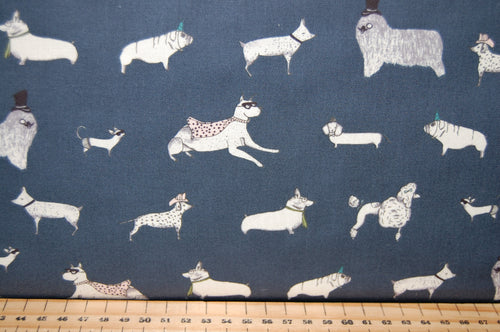 Fabric Shack Sewing Quilting Sew Fat Quarter Cotton Quilt Patchwork Dressmaking Howl + & and Hound Moda Lydia Nelson Dogs Dog Corgi Dalmation Dalmation Pug Super Hero Superhero Cape Poodle Paw Print (2)