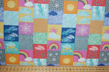Lewis & and Irene Whatever the Weather Spring Summer Autumn Winter Today Date Day Month Season Chart Panel Rain Sun Sunshine Snow Snowflake Rainbow Ladybird Bird Sheep Lamb Rabbit Kit (3)