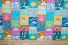 Lewis & and Irene Whatever the Weather Spring Summer Autumn Winter Today Date Day Month Season Chart Panel Rain Sun Sunshine Snow Snowflake Rainbow Ladybird Bird Sheep Lamb Rabbit Kit (7)