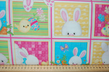 Shelly Comisky Henry Glass & Co Fabric Shack Sewing Quilting Sew Fat Quarter Quilt Pink Blue Rabbit Bunny Hare Easter Egg Sheep Panel Woolly Chick Chicken Butterfly Butterflies Floral Flower Yellow Lemon